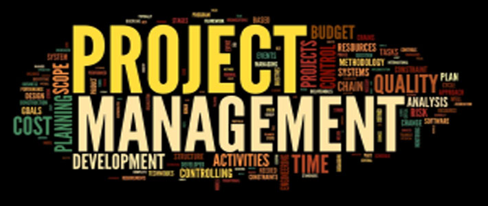 O que se espera do Gerente de Projetos