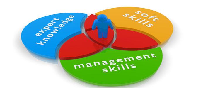Treinamento: Desenvolvimento de Soft Skills para Gerentes, Coordenadores e Líderes.