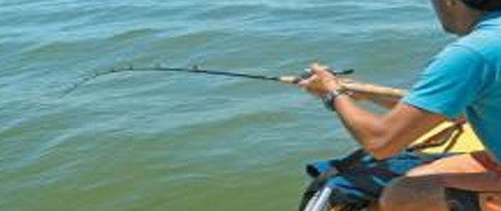 O Pescador e o Executivo